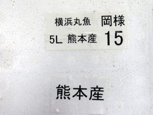 img_2520